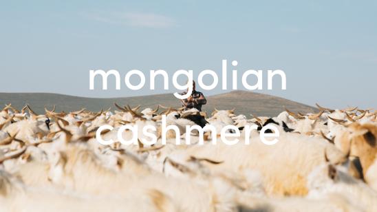 mongolian cashmere showmewhere
